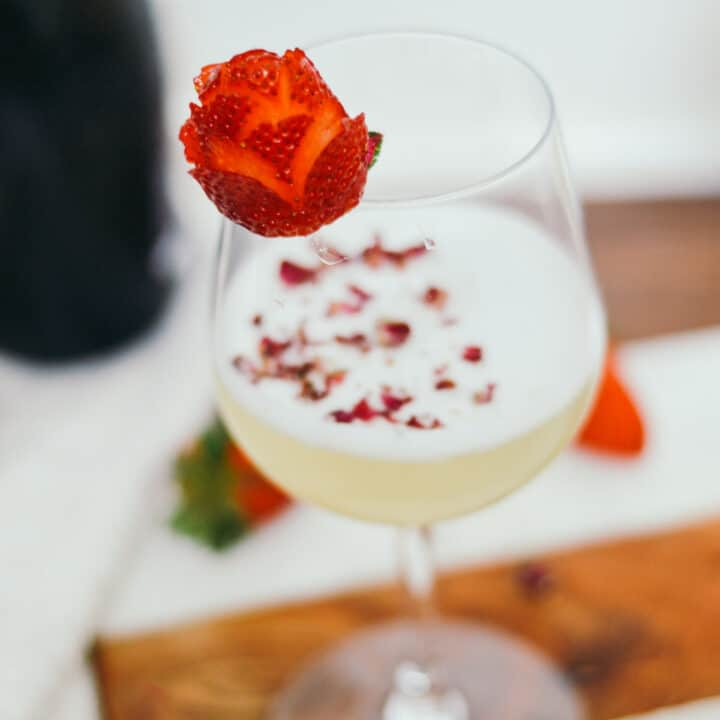 Easy Gin Fizz Recipe