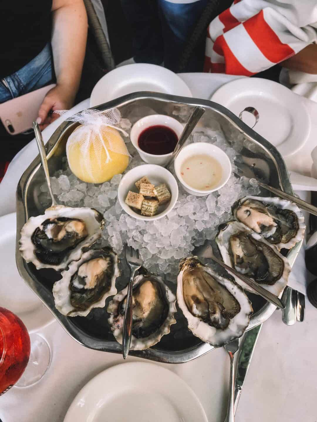 Delicious oysters in charleston