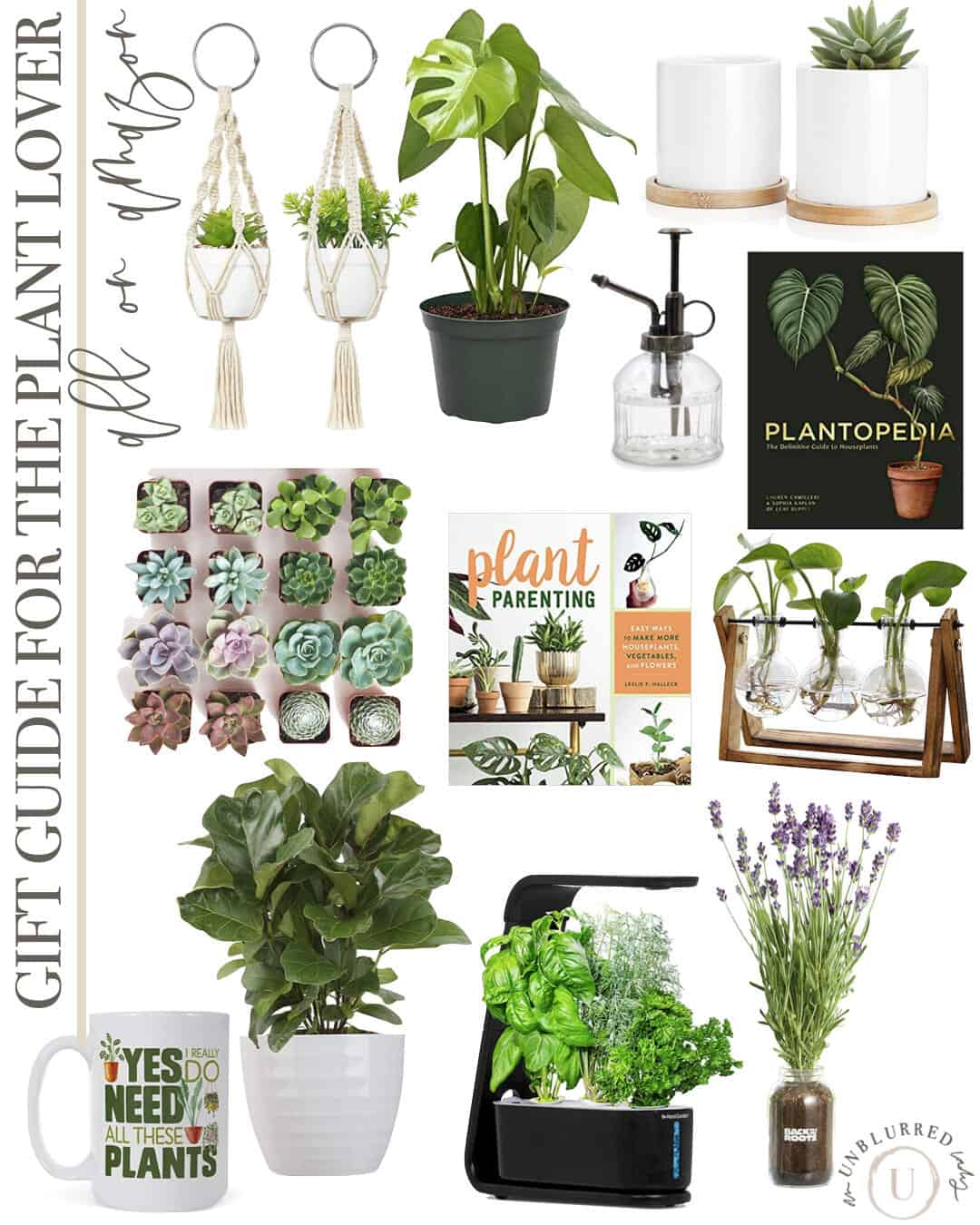 Gift Guide for the Plant Lover on Amazon
